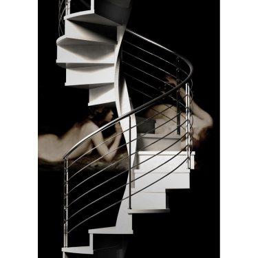 EXCEPTION prestige escalier colimaçon bois pour les marches